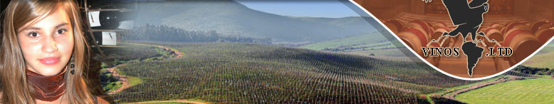 Vinos Weingroßhandel Weinimport Direktimport für Weine aus Chile Argentinien und Südamerika